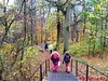 """15-11-2009            Gooise lus       18.5 KM    NS Wandeltocht  (9) • <a style=""""font-size:0.8em;"""" href=""""http://www.flickr.com/photos/118469228@N03/16386516188/"""" target=""""_blank"""">View on Flickr</a>"""