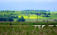 Marsh, Farmland, Wind Turbines (imageClear) Tags: green nature beauty landscape aperture nikon flickr sunny farmland marsh lovely nikkor marshland photostream windtowers 300mmf28 windturbines horiconmarsh imageclear