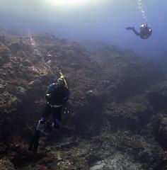 Dive20150209P22 (bobmccormackmobile) Tags: underwater diving olympus lordhoweisland ballspyramid olympusem5