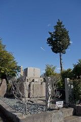 染井霊園 高村家墓所 TAKAMURA Family