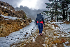 The Trail - Sandakphu !! (sandy_photo) Tags: travel blue nepal india snow beautiful canon landscape eos altitude freezing sigma trail temperature icy himalaya snowfall incredible eastern bengal himalayas mts mountainscape 70300 sandakphu snw 3636 treckking kanchanjungha 1100d