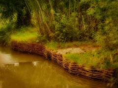 small creek (Steffi-Helene) Tags: nature creek outdoor bach trials naturellement gewsser badwindsheim