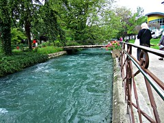 Annecy (AmyEAnderson) Tags: thiou river town city annecy france europe alps walkway garden pedestrian fence water waterway bridge flowers ivy current