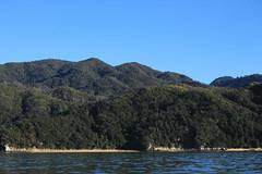 Abel Tasman National Park (mattegerton) Tags: ocean park new trip travel bridge blue tree green bird nature water forest trek day natural nelson hike unesco wanderlust zealand national journey backpack abel tasman
