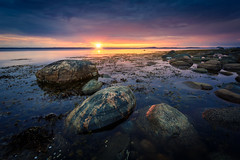Blue Sunset (Arvid Bjrkqvist) Tags: ocean blue light sunset sea orange sun texture water yellow clouds reflections dark evening coast still rocks sweden horizon overcast calm clear