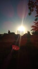 154/365 Sun Dapples (zinushana) Tags: projectlife project project365 light sun  365   sunbeams