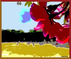 Effets de Peinture (Kay Harpa) Tags: paris france jardinduluxembourg likeapainting thebiggestgroup photokay juillet2016 reinesetfleurs queensandflowers