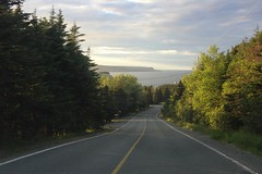 The Daily Drive (Tracy Christina) Tags: road ocean trees july outermarine drive newfoundland canada