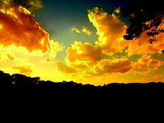 New York Sunset (dimaruss34) Tags: newyork brooklyn dmitriyfomenko image