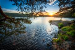 warm sunset in NOrway (olisko) Tags: trees sunset sky sun lake water norway nikon halden d800 1635 ostfold