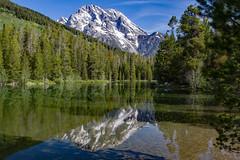 Mt Moran String Lake (Plain Adventure) Tags: mountain reflection grandtetonnationalpark wyomring