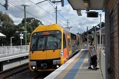 Clarendon (highplains68) Tags: aus australia nsw newsouthwales sydney sydneytrains richmondline clarendon waratah aset station