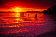 Sausalito Sunrise (Michael Zampelli) Tags: sausalito sfist sanfrancisco bay area bridge