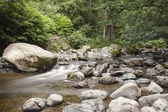 Aira Force (Dan Kemsley) Tags: lake district dan kemsley river flow little stopper lee filters cumbria