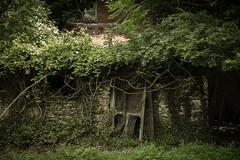 Fairlane Farm-27 (hiker083) Tags: abandoned farmhouse decay decrepit derelict cars vacant oncewashome
