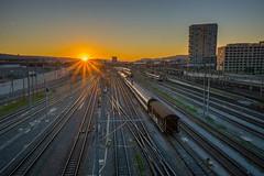 Good night. #hardbrcke #zrich #Zurich #visitzurich #switzerland #sunset (Werner_B) Tags: instagramapp square squareformat iphoneography uploaded:by=instagram train hardbrcke zurich zrich schweiz switzerland railway sunset tracks