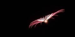 _MG_1198 (sdferrell) Tags: dmt fireworks ny
