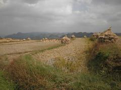 Guizhou China  20152 () Tags: asia china guizhou mountains