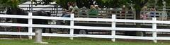 Wheaton, IL, Danada Forest Preserve and Equestrian Center, Fall Hay Ride (Mary Warren (7.4+ Million Views)) Tags: wheatonil danadahouse danadaforestpreserve horses wagon hayride