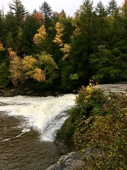 Swallow Falls SP ~ Falls in the Fall - HCS! (karma (Karen)) Tags: swallowfallssp garrettco maryland mdstateparks upperfalls waterfalls trees fallcolor cliche hcs iphone