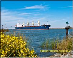 Ozke Aksoy 1564 LR (bradleybennett) Tags: cargo vessel ship shipping delta water river ocean tanker antioch port stockton ozge aksoy