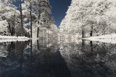 Milandes (PLF Photographie) Tags: infrared infrarouge reflet rflexion reflection nature landscape milandes bassin water tree white