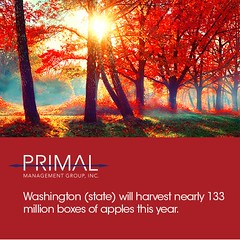 It's time for a new edition of #TriviaTuesday!!! Starting today we're introducing Fall Facts!! Apples are one of the top crops during the autumn season. #PrimalMgmtGroup #Fall #Autumn (primalmanagementgroup) Tags: primal management group reviews careers jobs chesapeake va