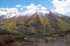 Haizi Valey (Vinchel) Tags: china sichuan siguniang trek outdoor mountain hiking fuji xt2 1655mm f28 landscape hill mountainside valley travel