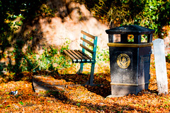 The Pond bench. (Ray Duffill) Tags: bench autumn colours leaves