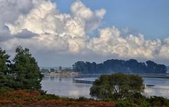Autumn At Arne (Tilney Gardner) Tags: nikon arne dorset landscape seascape poole harbour clouds