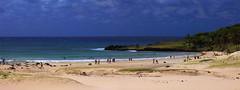 Anakena - 005 (JEM02932) Tags: anakena ihadepscoa easterisland isla ilha island praia beach