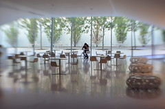 Within Contemplation (MPnormaleye) Tags: dreamy fantasy ethereal garden trees tables chairs shiny reflection gauzy strange lensbaby sweet35 bokeh blur urban gallery museum art