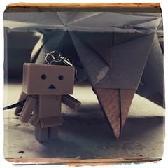 Say hello to my new little friend - Danbo (meepeachii) Tags: christmas weihnachten star stern karton danbo danboard iphone6 hipstamatic