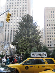 2014 Christmas Tree Rockefeller Center 2243 (Brechtbug) Tags: above christmas new york city nyc light holiday snow tree ice up rock 30 night standing lights workers with skating decoration center ornament ornaments rink rockefeller load lites shoveling oversize 2014 12072014