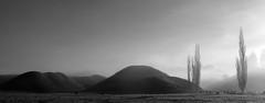 King Country, New Zealand 2012 (2nd Edit) (Chris Hooton) Tags: nikon blackandwhitephotography nikond3100 chrishooton chrishootonphotography chrishootonnewzealand