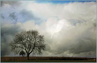 Ciel menaçant sur la rue Voie du Moulin, Sprimont, Belgium