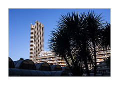 Barbican beach (jrockar) Tags: street city blue light shadow sky people urban colour building tree london beach silhouette architecture contrast 35mm lens concrete photography prime shot candid streetphotography documentary vivid rangefinder snap palm barbican human instant metropolis moment standard development brutalism decisive cityview x100s