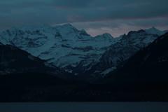 Blemlisalp mit Thunersee im Berner Oberland im Kanton Bern in der Schweiz (chrchr_75) Tags: mountain lake alps berg lago schweiz switzerland see suisse swiss lac bern alpen christoph svizzera berner januar thunersee berneroberland oberland jrvi  suissa 2015 s 1501 kanton chrigu blemlisalp janaur kantonbern alpensee chrchr hurni chrchr75 chriguhurni albumthunersee chchr chriguhurnibluemailch blemlisalpberg januar2015 hurni150115 albumzzz201501januar albumblemlisalp
