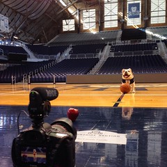 """An apple, a basketball, a #bulldog, a camera, and Hinkle Fieldhouse. Must be the makings of a little video. #GoDawgs • <a style=""""font-size:0.8em;"""" href=""""http://www.flickr.com/photos/73758397@N07/16115320213/"""" target=""""_blank"""">View on Flickr</a>"""