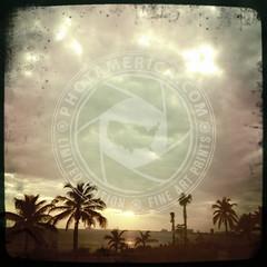 FLORIDA-403
