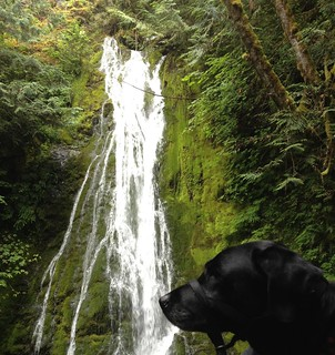 Washington State waterfall