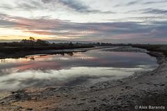 Mudflats (abaranda) Tags: california ca sunset nature northerncalifornia paloalto marsh southbay mudflats baylands santaclaracounty baylandsnaturepreserve paloaltobaylandsnaturepreserve