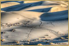 footprints in the dune 4632 (roswell433) Tags: california sunset sand tracks footprints deathvalley sanddunes eurekadunes