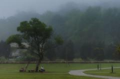 Watching Smog around the Trees_ () Tags: park trees tree smog scenery cloudy smoke dream taiwan memory   taoyuan   daxi        cihucksmemorialsculpturepark