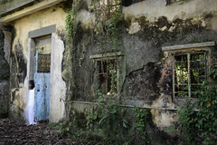 """""""Ghost"""" in a derelict village, near to Sai Kung, Hong Kong (Ben Molloy Photography) Tags: trees abandoned halloween buildings scary woods nikon village ben ghost chinese haunted creepy spirits spooky hong kong ghostly molloy derelict ghouls benmolloy benmolloyphotography benmolloyhongkong"""