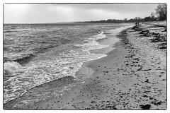 Beach (Håkan Dahlström) Tags: sea bw beach photography se skåne sweden sverige uncropped östersjön f40 2015 mossbystrand skånelän canoneos5dmarkii ¹⁄₆₄₀sek ef40mmf28stm 2514022015144935redigera