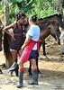 Samana (EnDie1) Tags: girls horse ross pferd samana domrep dominikanischerepublik lockenwickler endie1