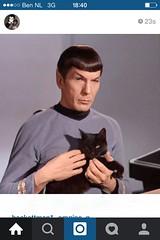 20150227 Star Trek (enemyke) Tags: startrek cat 1931 rip spock 83 leonardnimoy februari nimoy mrspock 2015 pixeldiary fotostream