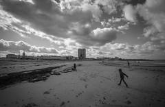 Photo of Winter on the Beach...