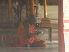 Monk Reading Luang Prabang
